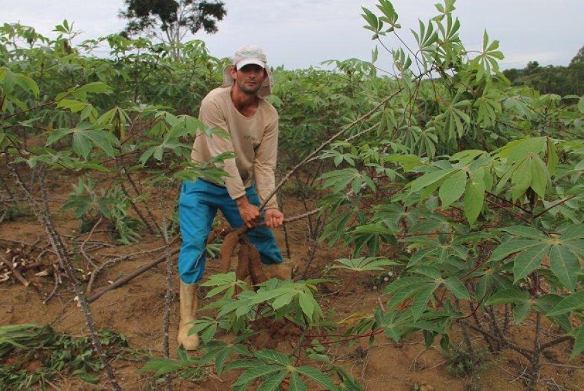 Programa de Aquisição de Alimentos - Agricultura Familiar