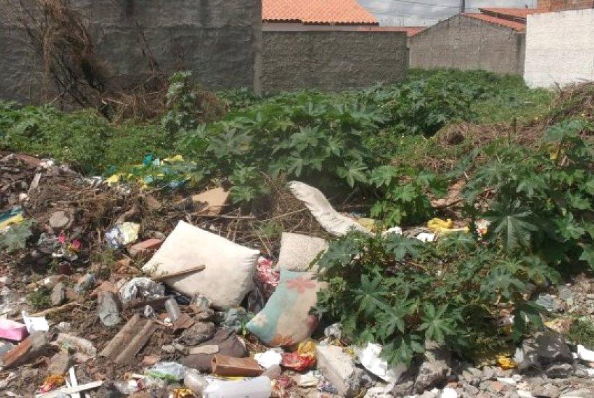 Secretaria de Obras e Serviços fiscaliza terrenos baldios